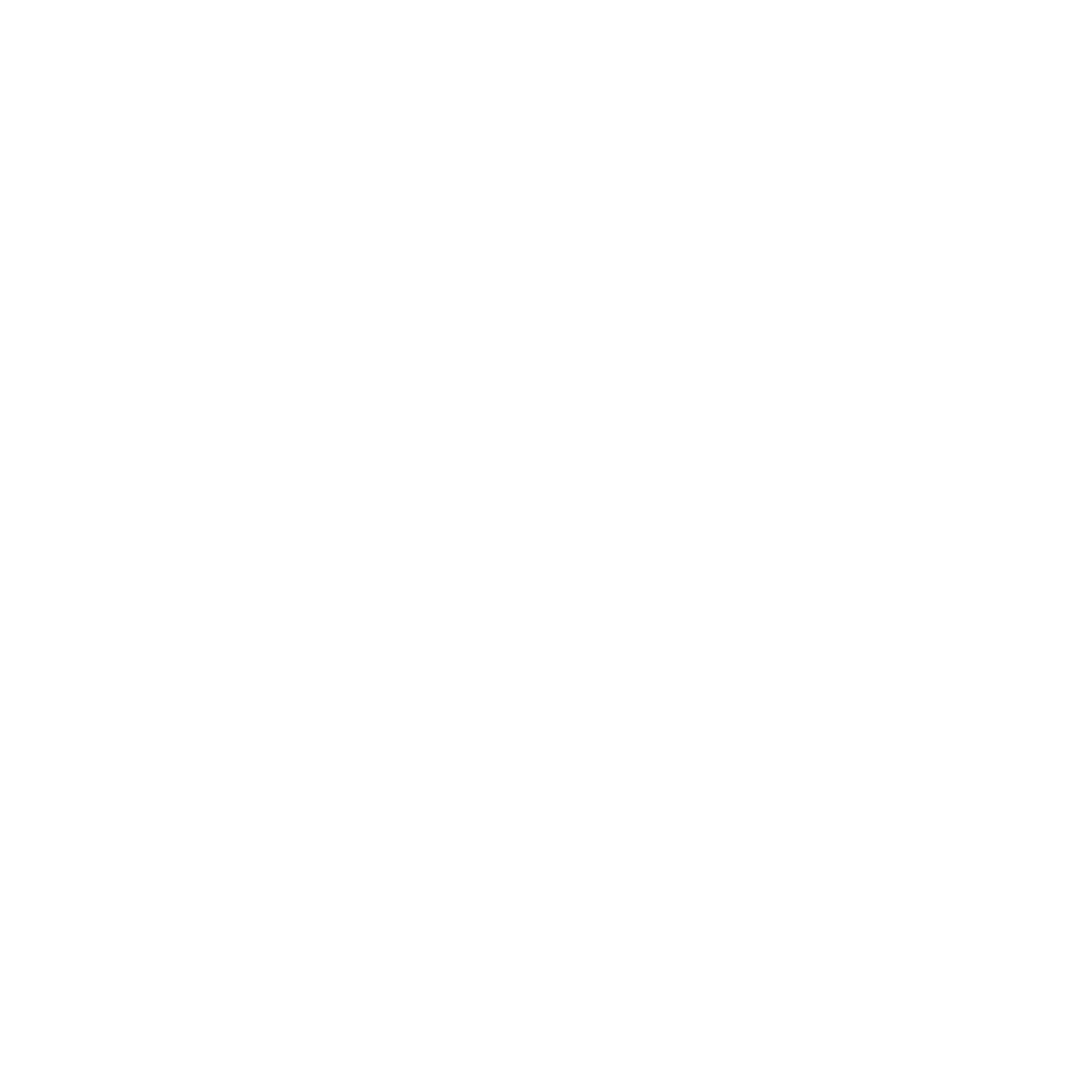 Brighton Logo White